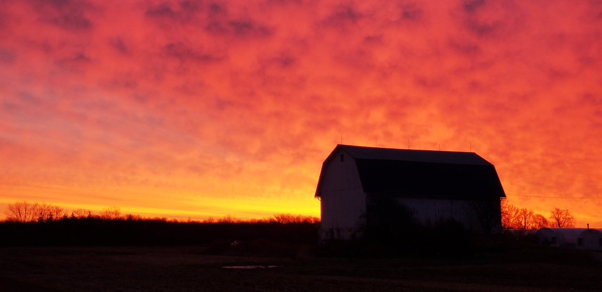 Beautiful sunrise near Penn Yan (photo)