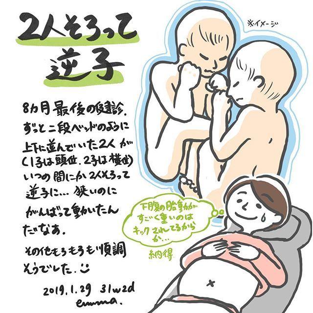妊娠 双子