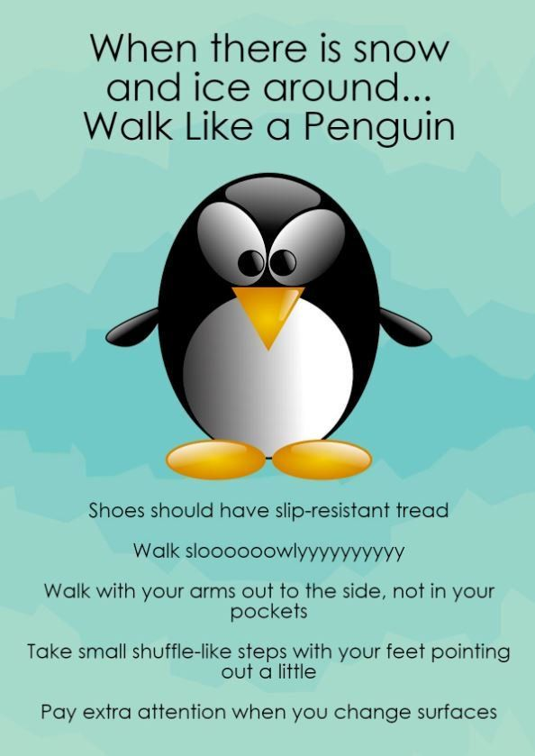 If the paths are icy this morning, help prevent slips and falls by walking like a penguin. Have a nice wide base, toes pointed outwards and take small steps. Wear sensible shoes with a good thread. Keep your hands out of your pockets so you can put them out if you fall. #Sneachta