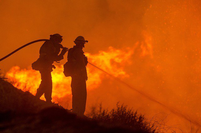 HOT TOPIC: It's all routine #vegetation management... until PG&E goes bankrupt - #utilities #wildfires #DTECH2019   https://t.co/zj5RbugVfX https://t.co/8KU8GgervL