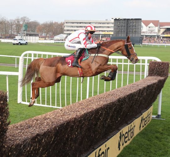 Future entries made including Red Infantry for @mrvendman in the @RandoxHealth Grand National @AintreeRaces and in the @WillHillRacing National Trial @haydockraces   For more information 👉 https://t.co/KuNHpwtp5v https://t.co/33hRsukNhy