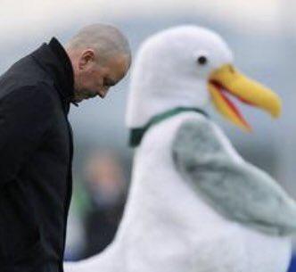 Hoy en lo +viral dentro de las redes sociales : momentos surrealistas de las mascotas de los equipos de fútbol cuando les acompañan al equipo en el minuto de silencio #futbol #humornegro #risas #viernes