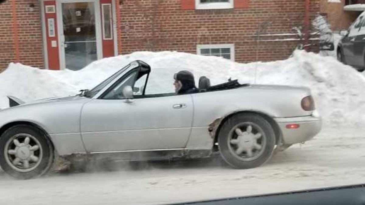 Viewer Sarah S. spotted this unusual sight on Johnson Street on Tuesday, January 29th.