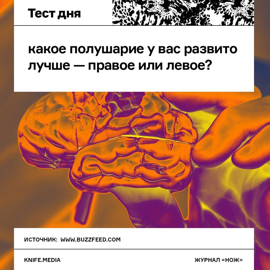 Тест на левое и правое полушарие картинки