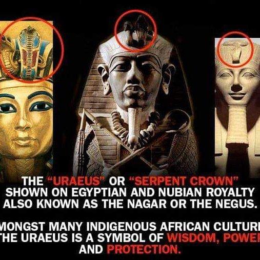 Black Egyptians (@BlackEgyptians)   Twitter