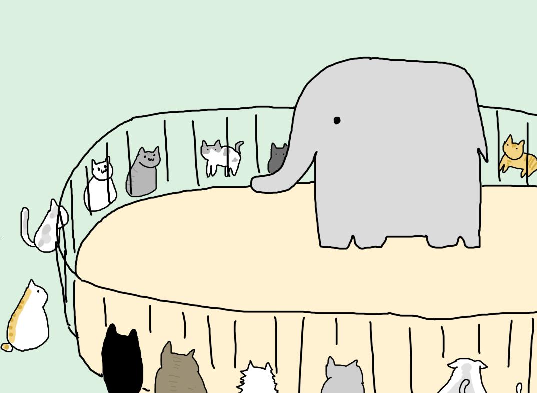 ゾウが人間をみてる時の脳波が人間がペットみてる時の脳波と似てる的なツイート見たんですけどつまりゾウからしたら動物園ってこんな感じなんですか