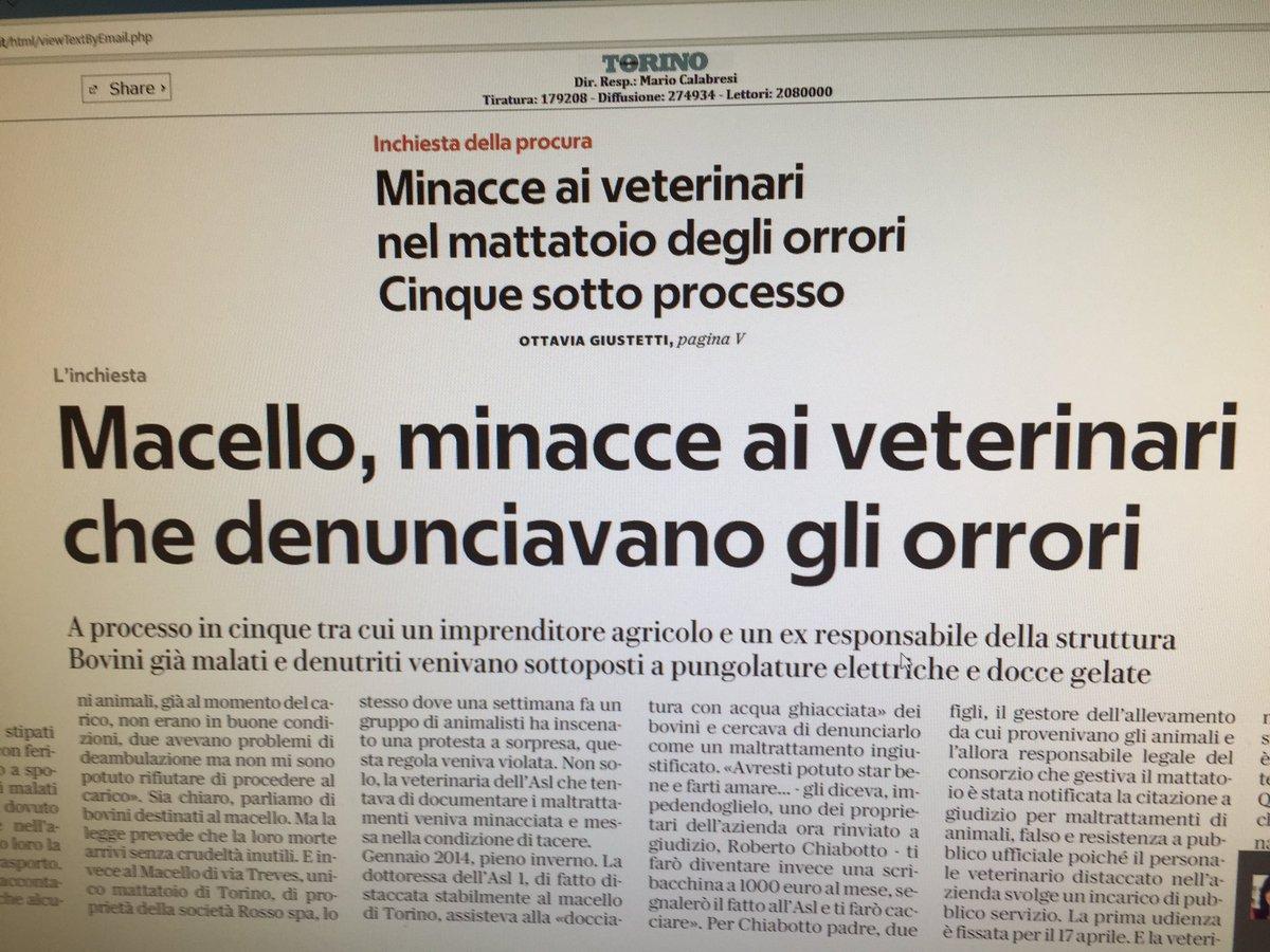"""Solidarietà ai medici veterinari che denunciavano le illegalità nel macello """"Rosso Spa"""" di Torino. È iniziato il processo per le minacce ricevute"""