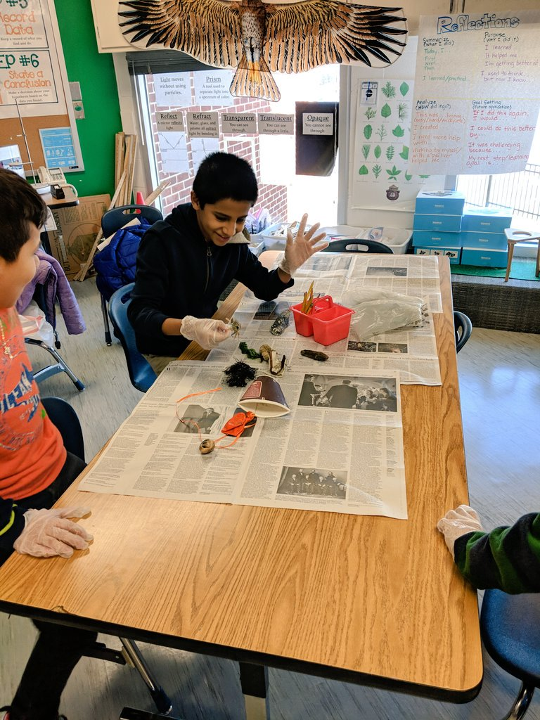 Ss researching the effects of plastic on ocean habits by interacting with real-world examples then creating predictions that look 100 years into the future.  <a target='_blank' href='http://twitter.com/STEM_K12'>@STEM_K12</a> <a target='_blank' href='http://twitter.com/AbingdonGIFT'>@AbingdonGIFT</a> <a target='_blank' href='http://twitter.com/APSscience'>@APSscience</a> <a target='_blank' href='http://twitter.com/APSVirginia'>@APSVirginia</a> <a target='_blank' href='https://t.co/7HkUQKtaqe'>https://t.co/7HkUQKtaqe</a>