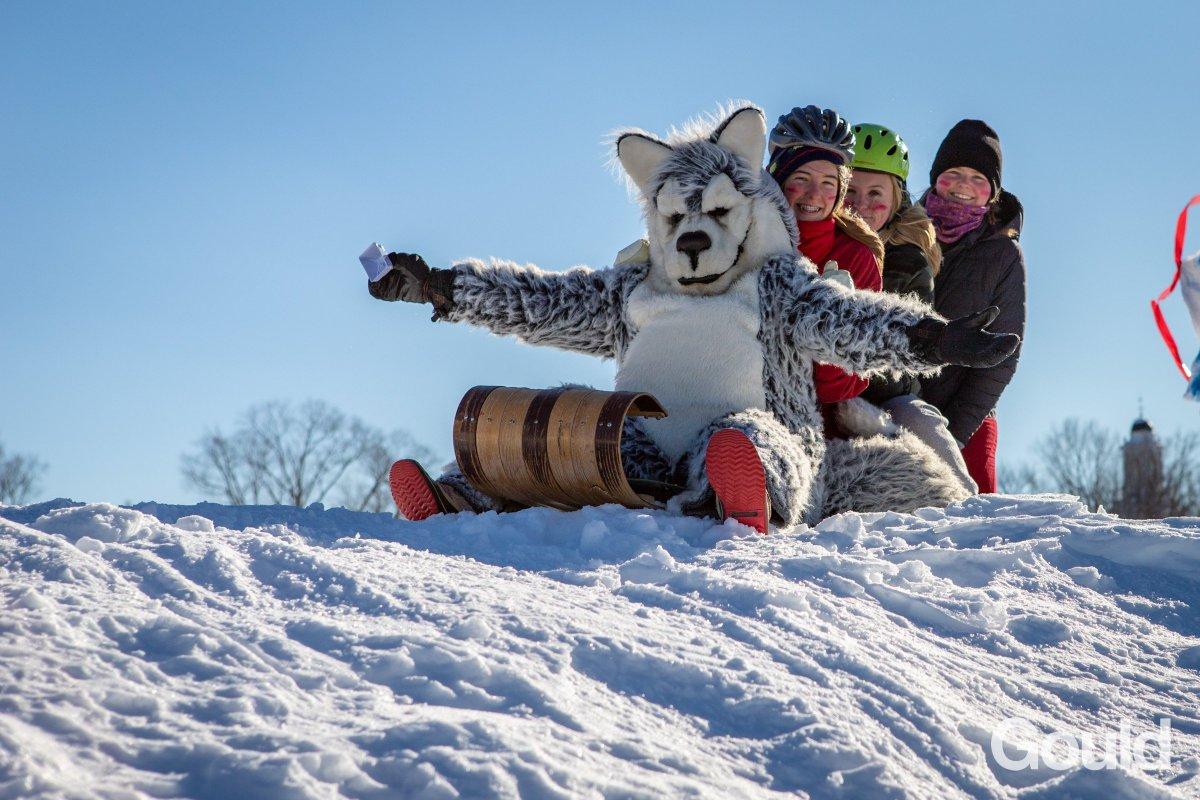 Hey @BlairBraverman, are we doing it right? #wintercarnival2019 #gouldlife #dogsledding
