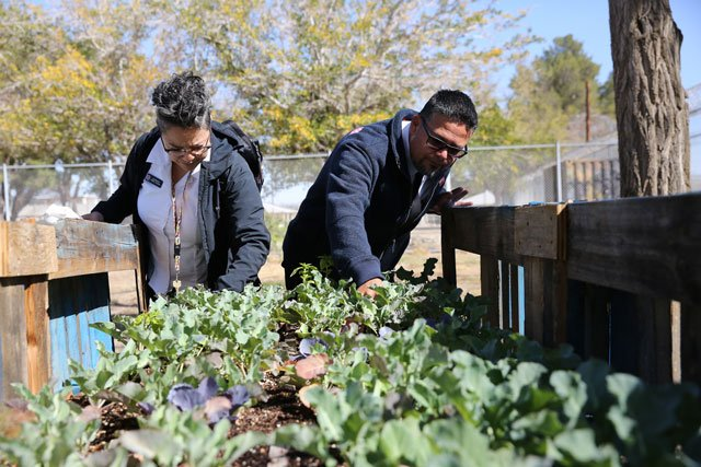 What started as a pop-up winter homeless shelter has filled a need in Antelope Valley and created a community that fosters volunteerism and growth among residents. http://www.newfrontierchronicle.org/antelope-valley-shelter-brings-healing-to-homelessness-through-community/…