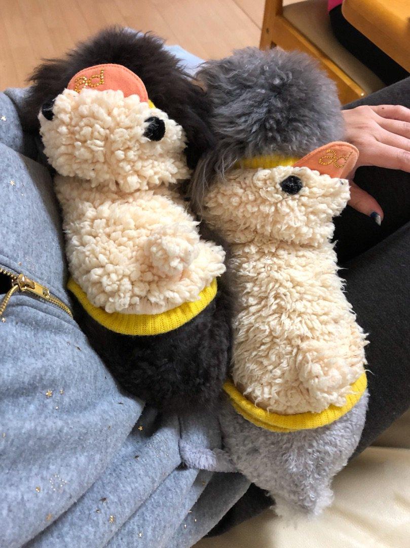 まり&まろ 母娘の姿(*'ω' *) ー アメブロを更新しました #犬のいる生活 ameblo.jp/yorikokoro/ent…