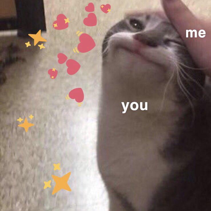 Crying Cat Meme Hearts | Meme Creation