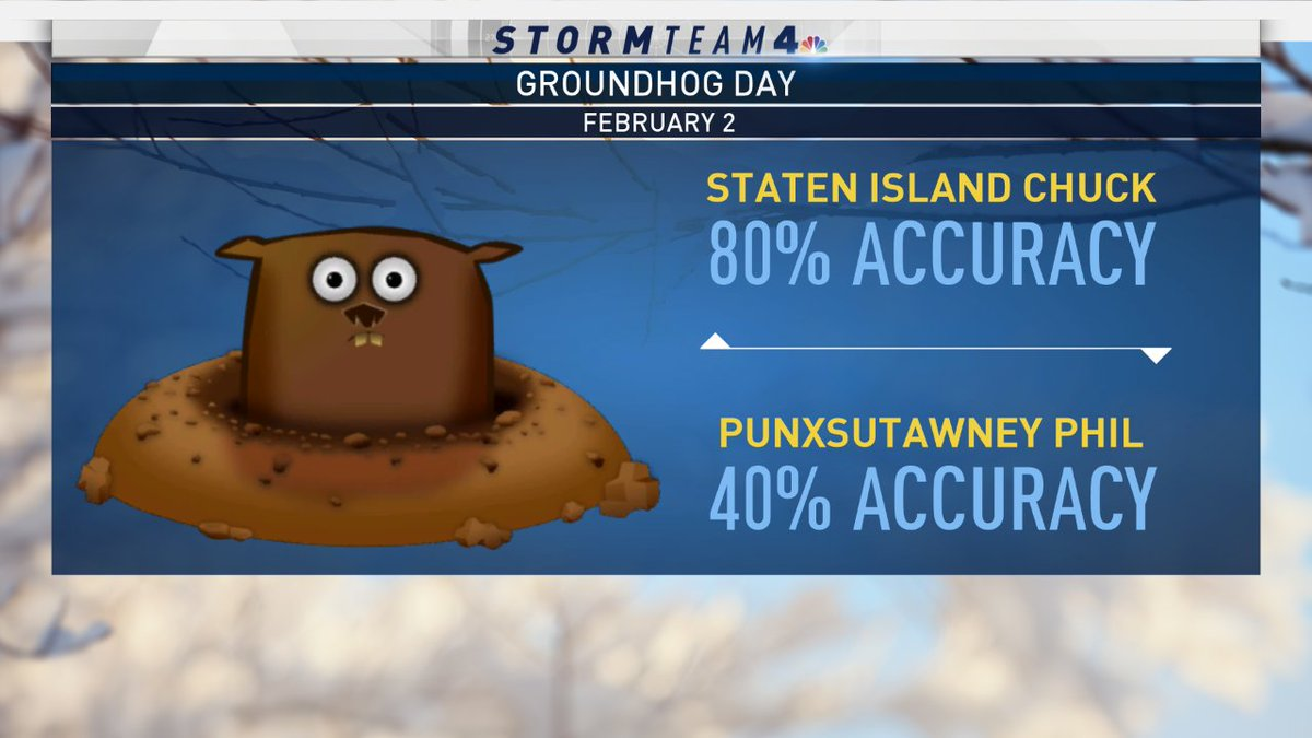 Maybe we should hire Staten Island Chuck to be part of Storm Team 4! He's almost as accurate as we are! #NBC4NY  #GroundhogDay