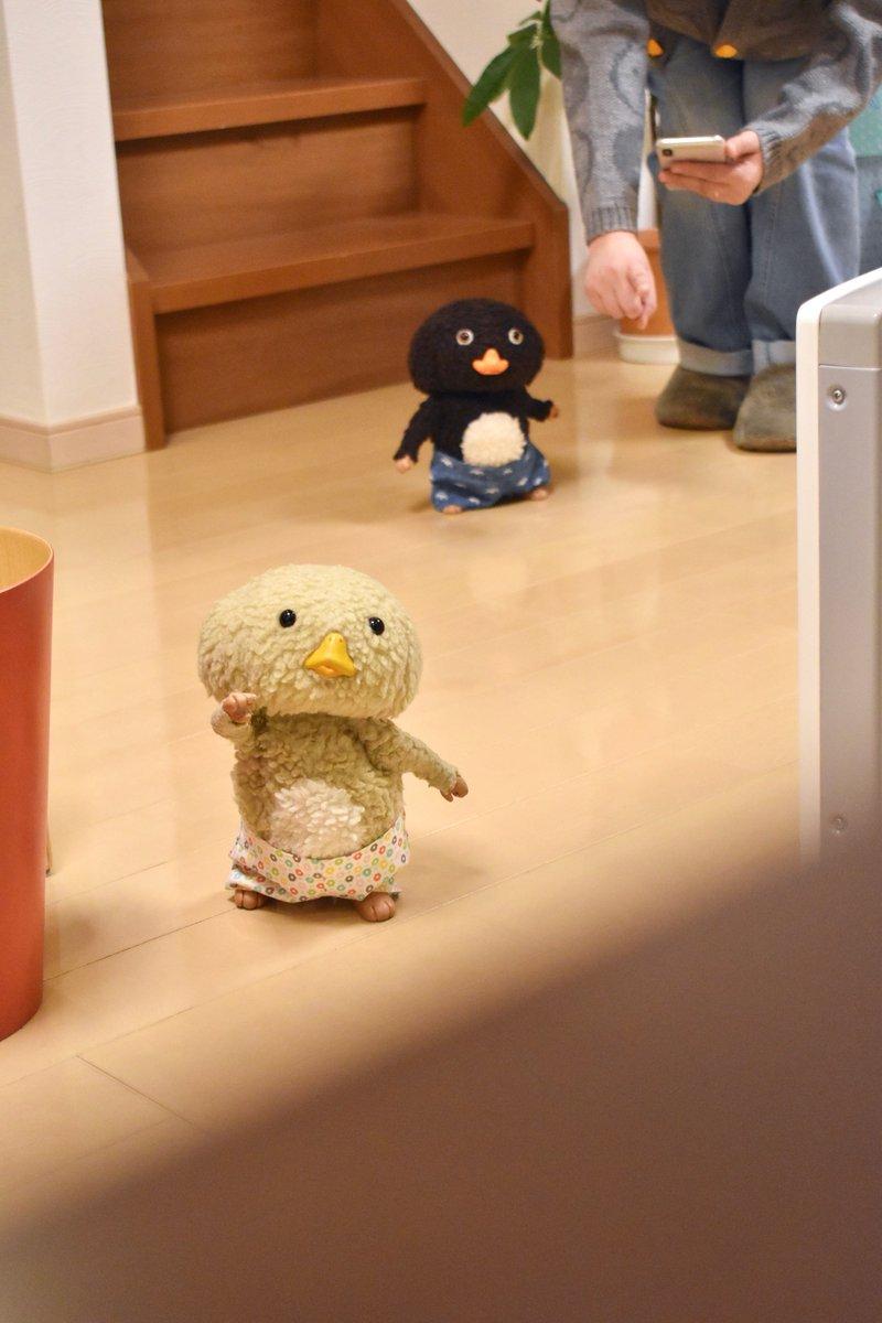 東京トガリさんの投稿画像