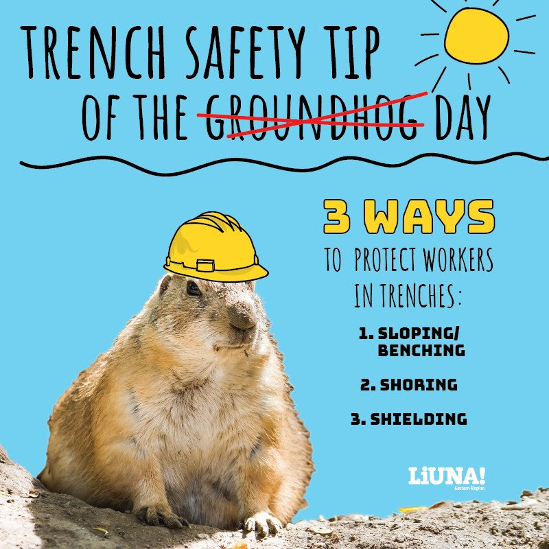 .@GroundhogClub may know about the weather. But #LIUNA members know about excavating!  3 ways to dig #SAFE:  Sloping/benching: Angle trench walls & build steps  Shoring: Install supports to stop soil movement  Shielding: Use trench boxes  #GroundhogDay #SafetyFirst @TrainingLiuna