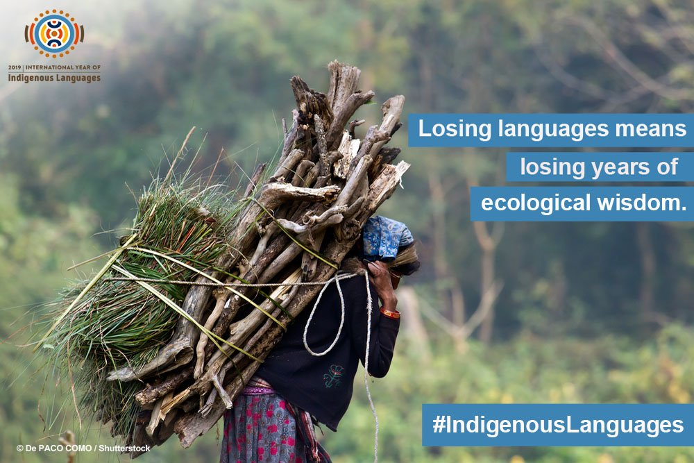 #IndigenousLanguages hold invaluable global perspective. Native languages preserve generations of sacred ecological knowledge collected since time the oldest times.  Losing them is the loss of wisdom.  Act wisely. Act now.  https://on.unesco.org/2KFnWpy