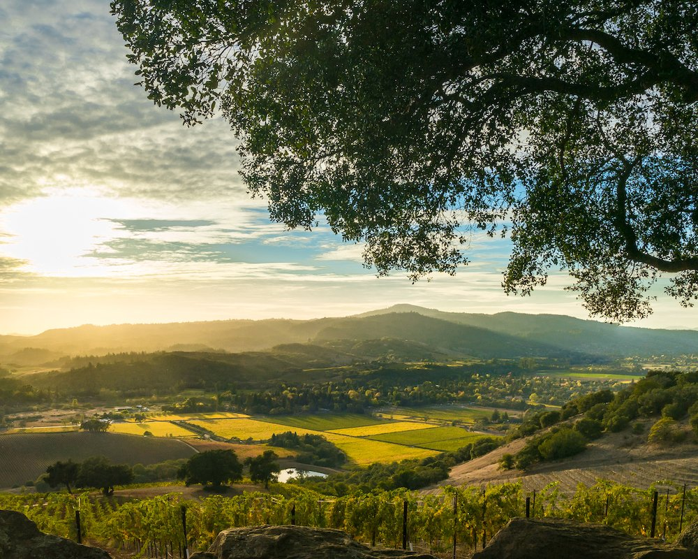 http://ow.ly/4USH30nxbUj This is the time of year Heidi and I start reflecting on the previous year and plan for the next. Discover what we learned in our latest blog post. #sebastopolrealestate, #realestate, #Sonomacounty,#sebastopol
