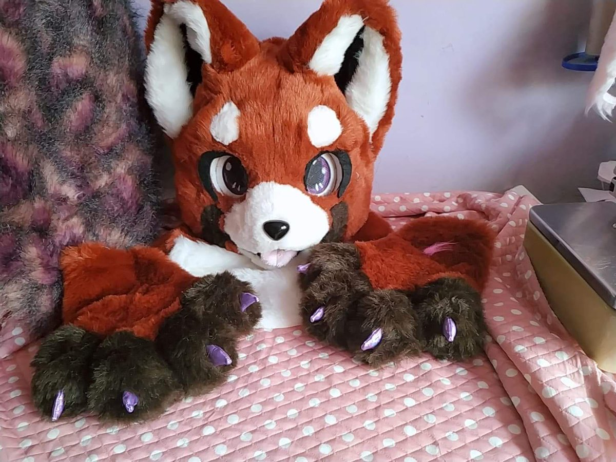 "Fursuit Panda snuggles fursuits on twitter: ""pre-made red panda kemono"