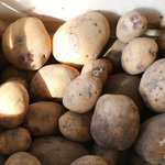 ジャガイモに紛れて手榴弾が発見されるとか爆発しなくて良かった!
