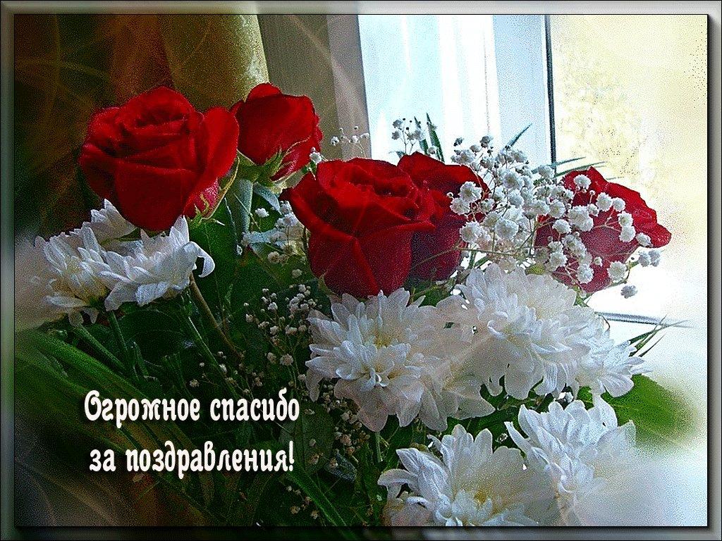 Днем рождением, картинки с спасибо и благодарю за поздравления