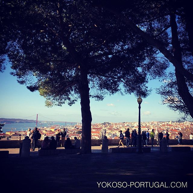 test ツイッターメディア - リスボンのサン・ジョルジュ城からはリスボンが一望できます。 #リスボン #ポルトガル https://t.co/a1Hu0fXtZu