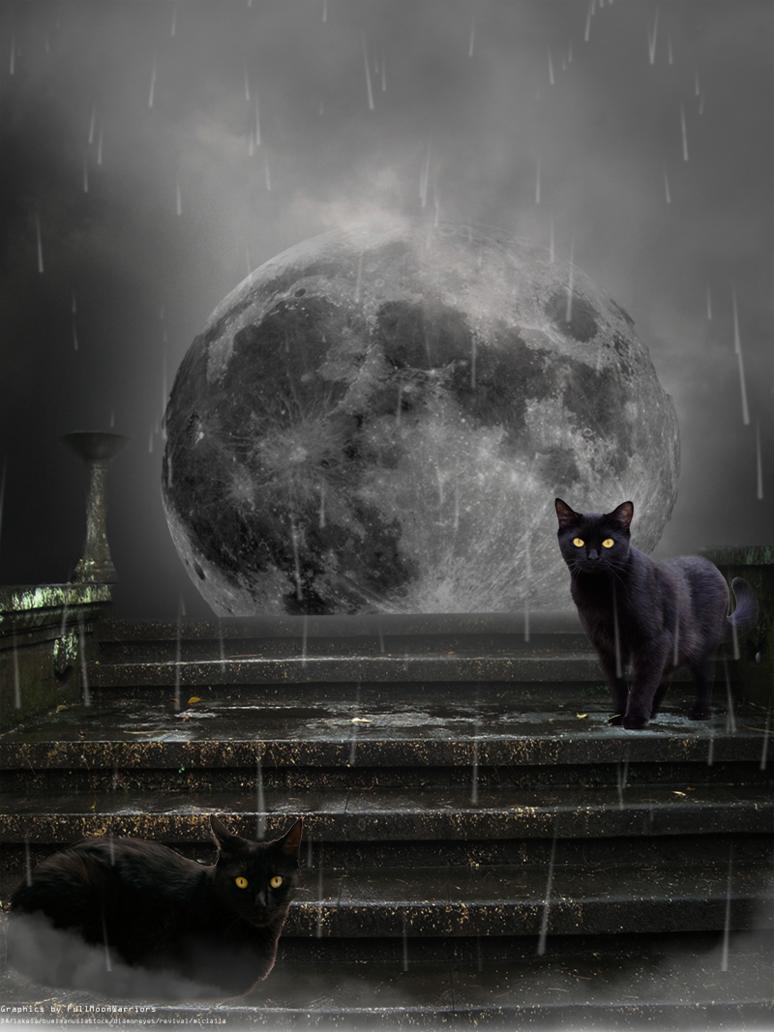 ночь дождь луна картинки настолько