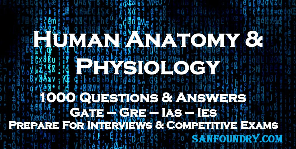 Anatomy And Physiology Exam Answers