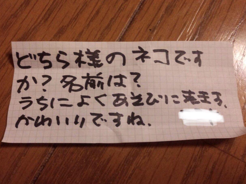 家によく遊びにくるネコの首輪に手紙を結びつけてみたら、返事来たwww