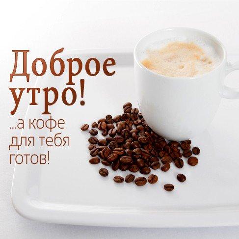 позволяет упорядочить просыпайся твой кофе готов фото число особей