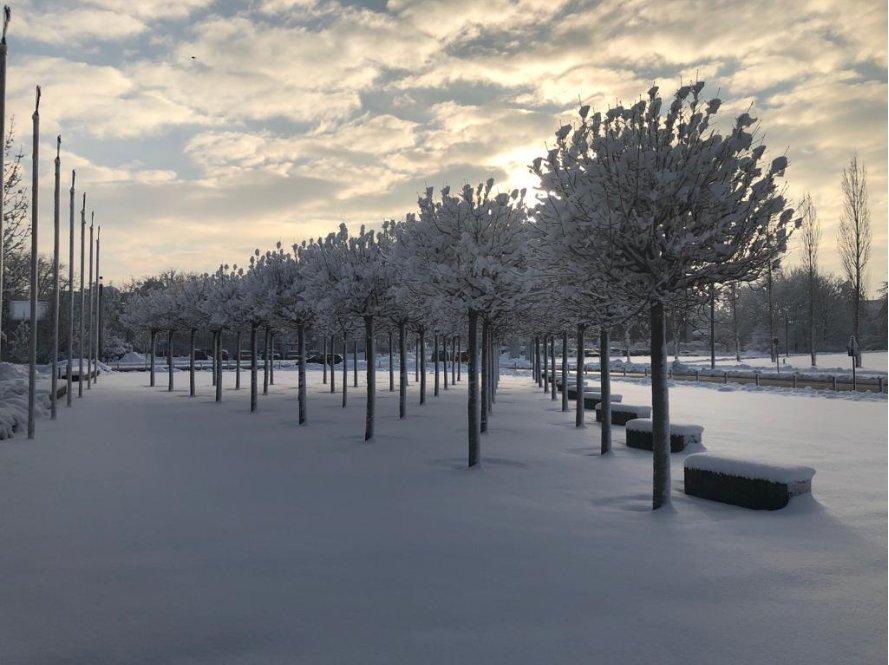 Lrz On Twitter Guten Morgen Vom Winterwonderland Am Lrz In