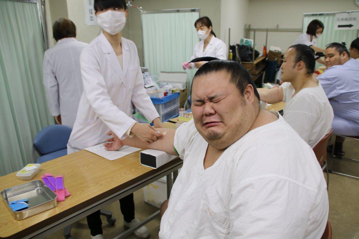 <健康診断>採血に顔をゆがめる千代丸。#sumo #相撲