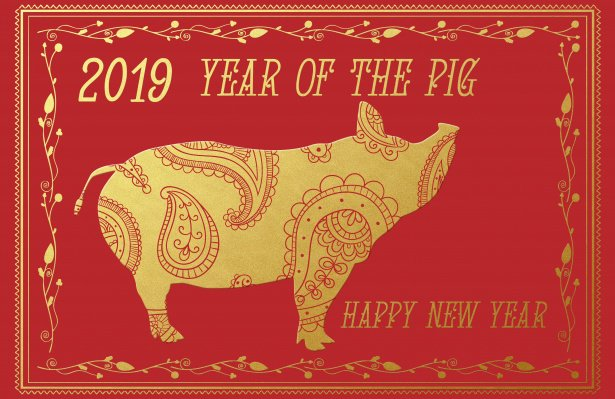 Happy Chinese New Year! 🎆🎉 Happy New Year to all who are celebrating the start of the year of the pig today.
