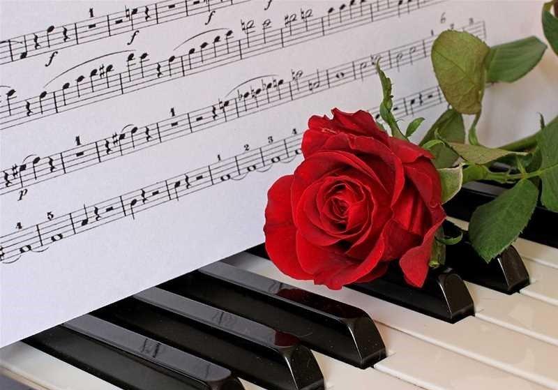 Своими руками, цветы и ноты картинки красивые