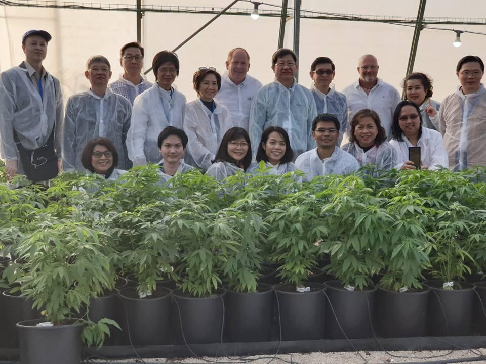 Израиль купить марихуану положительный тест на марихуану что делать
