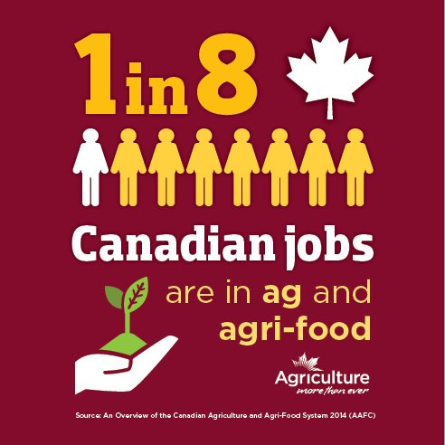 TCO Agromart- Selby's photo on Canada Day