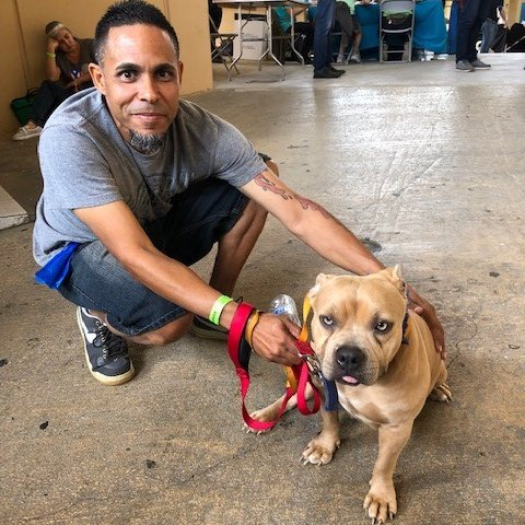 Spayathon™ for Puerto Rico is well underway! Through this groundbreaking spay/neuter initiative, we've been able to impact the lives of over 18,000 families, including Abner and Sandy. Sandy had a rough start in life, but she truly hit the jackpot when Abner rescued her. 💞