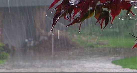 باران را دوست دارم که به زندگی ما می بارد عاشق احساساتی هستم که هر طوفان ایجاد می کند تو و من برای هر طوفانی که با آن می آید زندگی می کنیم اوه، عزیزم، باران می گوید که من دوباره و دوباره عاشقت هستم! https://t.co/U2Cpbq3TFu https://t.co/sGox1eOSRD