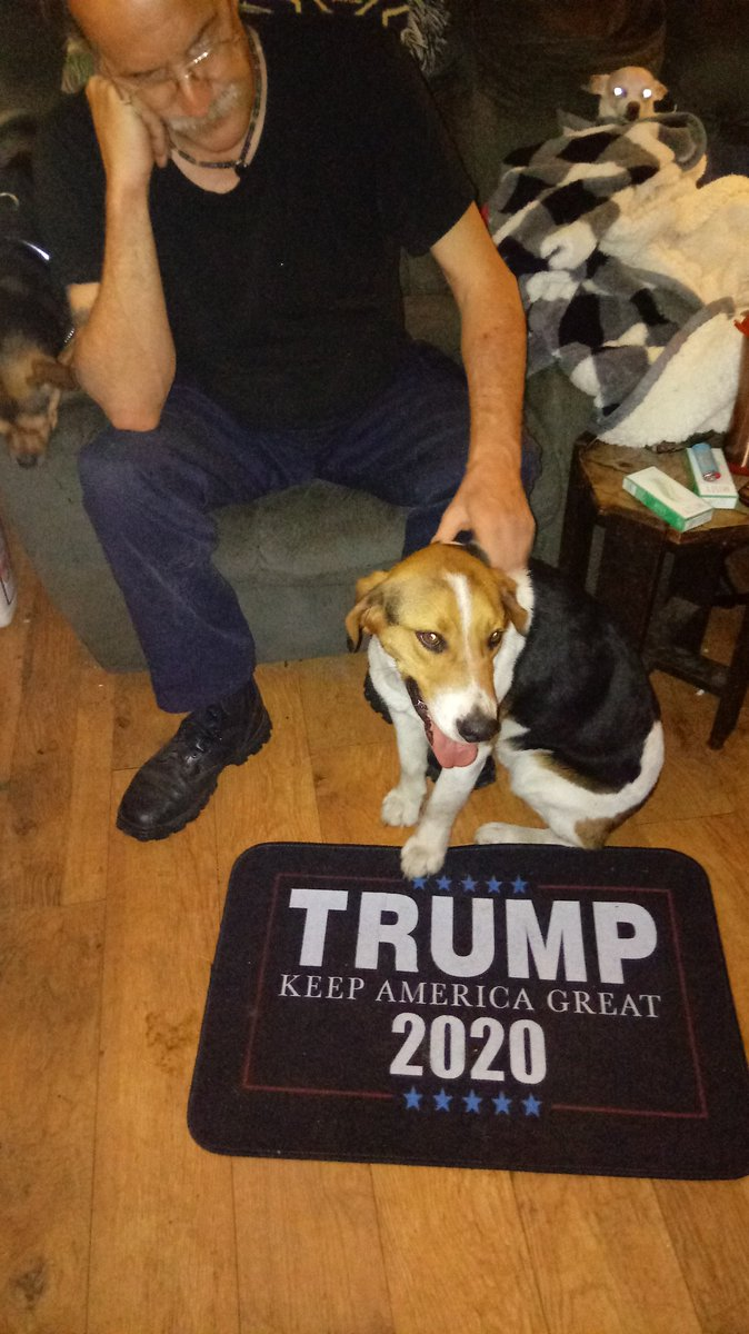 My MAGA dog Dilley is ready for 2020