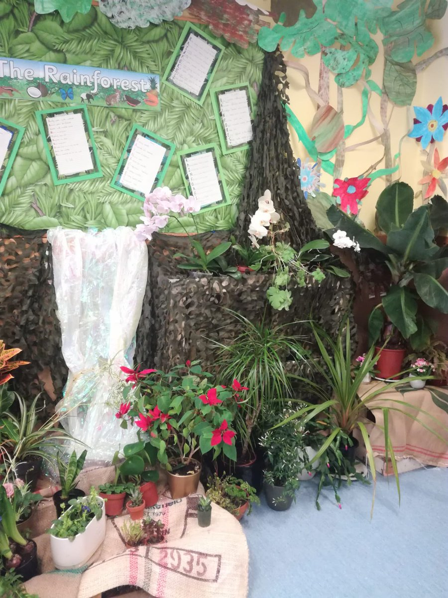 Alison from @dobbies visited to judge our #GreenSpaces project. F4's #rainforest display & the Japanese garden & propagating skills in F3 were judged to be the winners. Thank you for getting behind the project. #gardening #plants