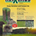 Image for the Tweet beginning: Did you know? Dryject's Maximus