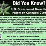 Image for the Tweet beginning: #Cannabis #CannabisCures