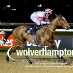 ZORAWAR wins the 19.15 with @shanefifigray riding for trainer @omeararacing.  Congrats to all winning connections.   📸 Pics by @WolvesRacesPics