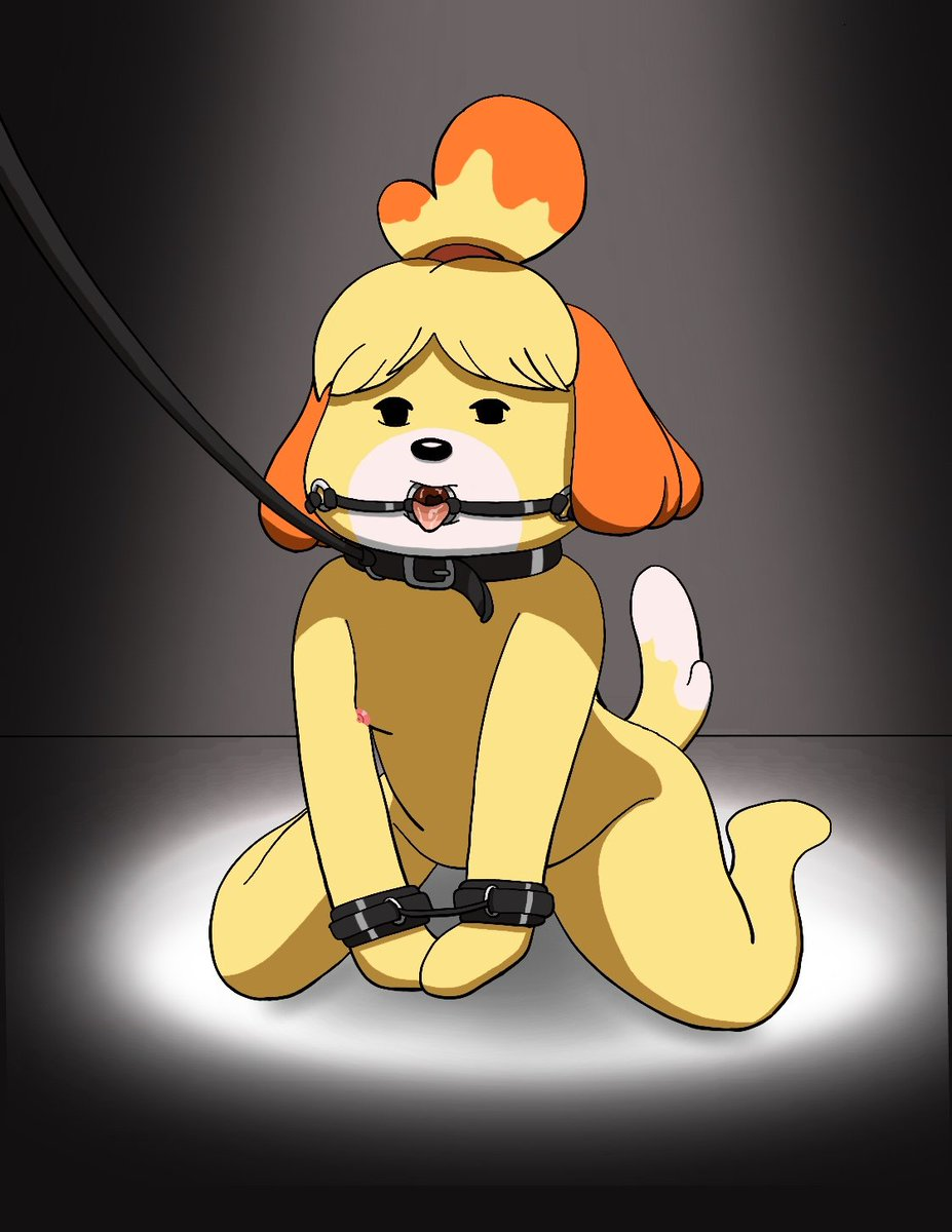 Am I the only one who thinks Isabelle would like this? Look at her, so eager. #nsfw #AnimalCrossing #animalcrossing #isabelle #nintendo #SuperSmashBrosUltimate #videogames #female #Dog #nude #bdsm #nipple