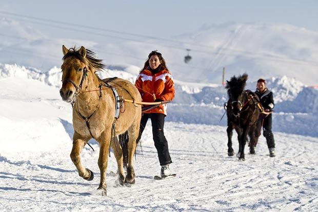 Amateurs de ski et passionnés de chevaux ce sport vous réjouira ! 🐴🎿#Jeudiphoto #Skijoëring https://t.co/A0ksEoO0A7