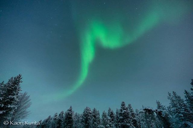 One more from other shots. #finland #lapland #saariselkä #inari #northernlights #auroraboreal #naturalphenomenon #january2019 #nature #visitfinland #visitlapland #ourfinland #visitsaariselkä #travel #tourism #sightseeing #aurorahunting #tourism #フィンラ… http://bit.ly/2tcee61pic.twitter.com/BmkSTiOf94  by Travel & Images Helsinki