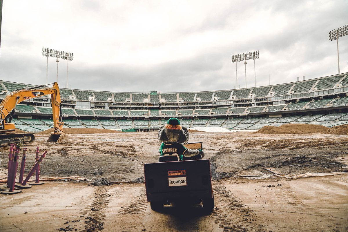 The field is coming back together. If this post gets 5000 likes, I&#39;ll hit some donuts out there...  <br>http://pic.twitter.com/M2rDP7x2nC