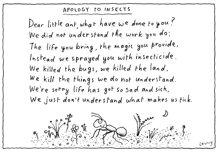 Apology to the ants & insects @leunigcartoons @SAFCEI, via @Greenanglicans