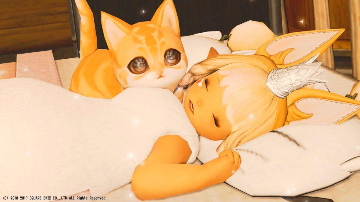 #猫の日 っということをすっかり忘れてて慌ててアップw  猫カフェでも行きたいな…_(:3>∠)_ #ff14 #ネコフェル #ララフェル