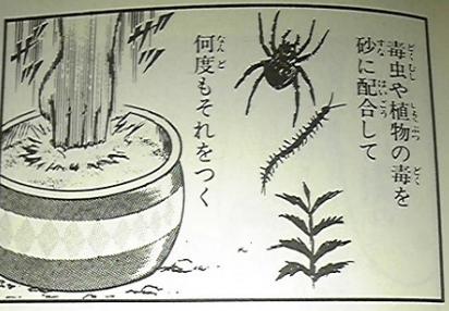 ろじぱら ワタナベさんの投稿画像