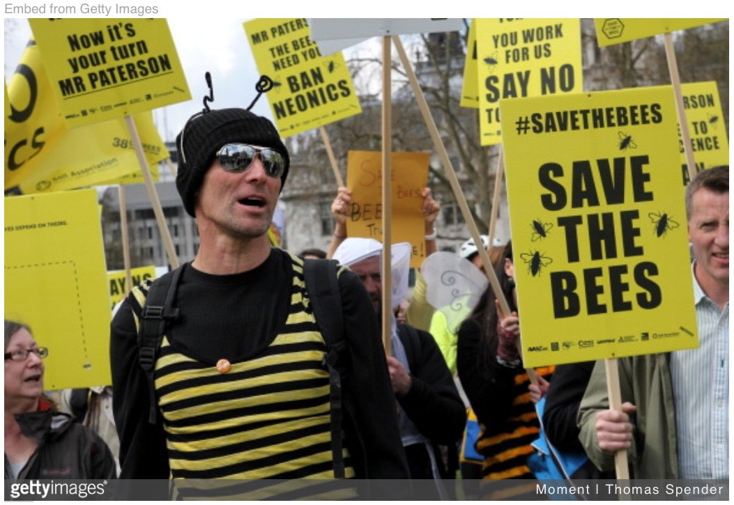 Tues 2/19: 🐝🐝 BUZZ THROUGH THIS ACTION ON BEES ...  📧 Email your legislators to ask them to stop #EPA's policy of granting large exceptions for the spraying of apicidal #pesticides.  Learn more/WATCH VIDEO▶️https://indivisibleventura.org/2019/02/19/tues-2-19-quick-action-on-bees/…   #Indivisible #savethebees #bees #environment